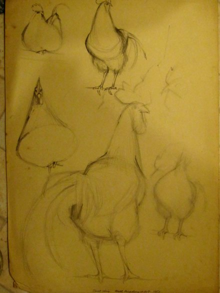 drawing2chick