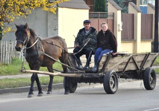 polishcart